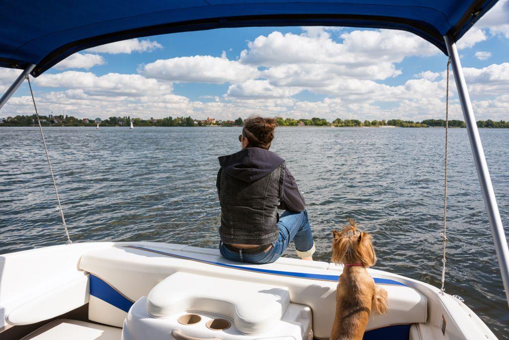 Auf den meisten Booten sind Hunde erlaubt, und ein Pomeranian kommt dort normalerweise gut zurecht
